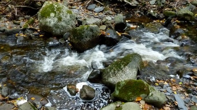 Hundreds of winding creeks feed into Bear River.