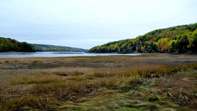 Low tide on Bear River.