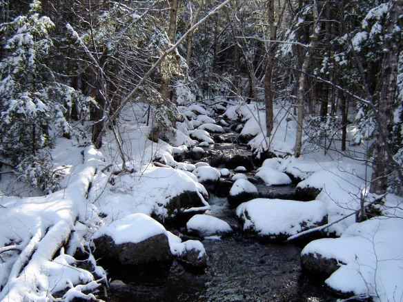 Winter is pristine and beautiful.