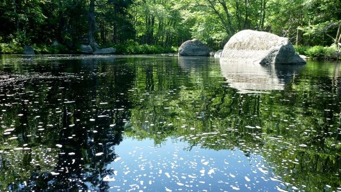 Swimming in Bear River.