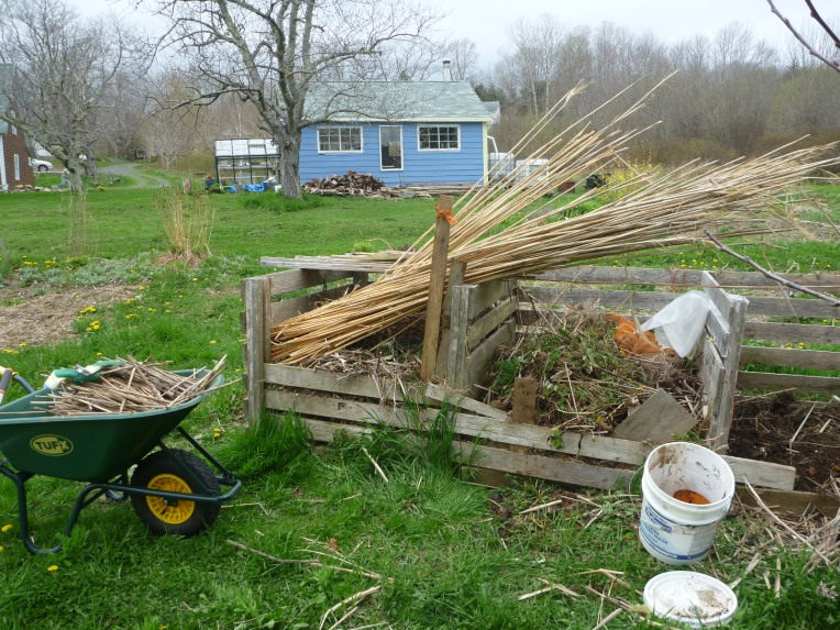 Reorganizing the compost area.